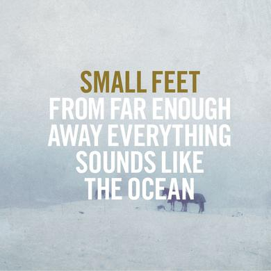 SMALL FEET FROM FAR ENOUGH AWAY EVERYTHING SOUNDS LIKE Vinyl Record