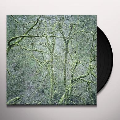 Six Organs Of Admittance DUST & CHIMES Vinyl Record