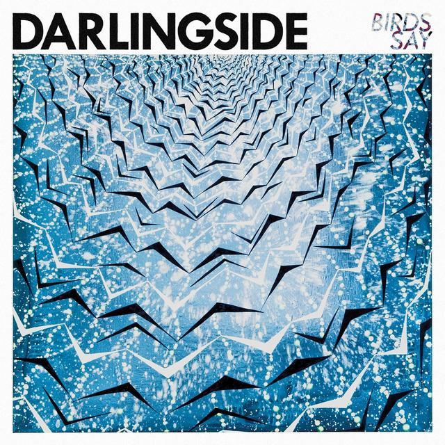 Darlingside BIRDS SAY Vinyl Record