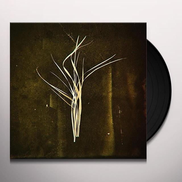 Lumisokea MNEMOSYNE Vinyl Record