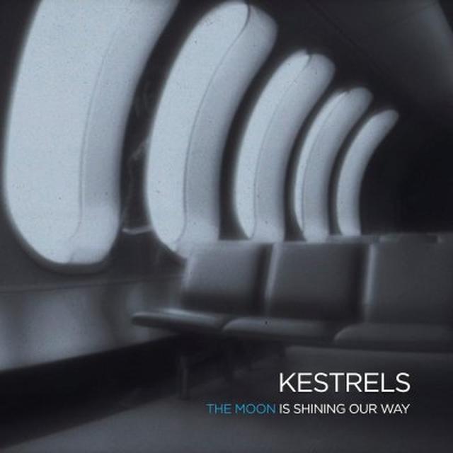 Kestrels MOON IS SHINING OUR WAY Vinyl Record