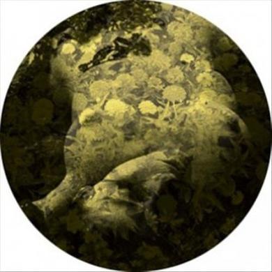 Salva YELLOBONE Vinyl Record
