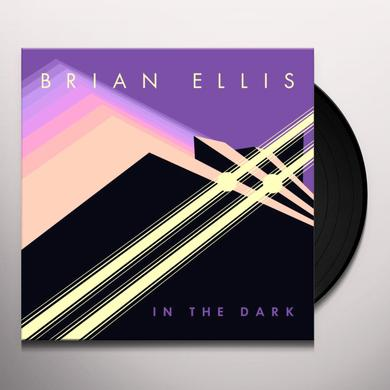 Brian Ellis IN THE DARK Vinyl Record