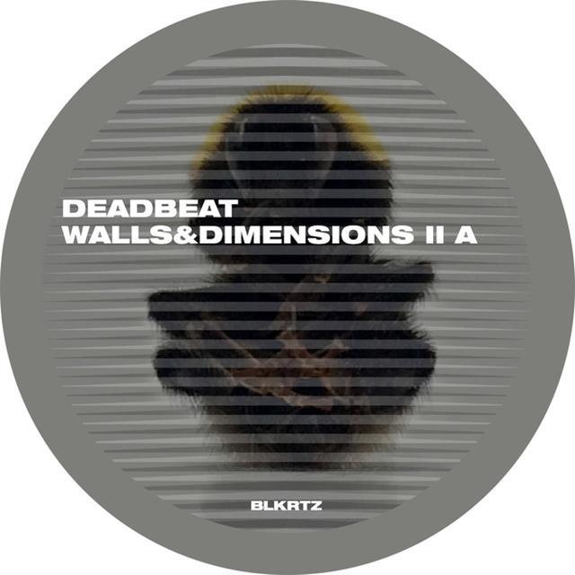 Deadbeat WALLS & DIMENSIONS II Vinyl Record