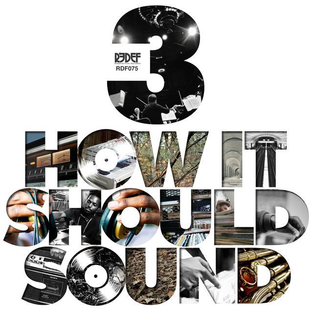Damu The Fudgemunk HOW IT SHOULD SOUND 3 Vinyl Record