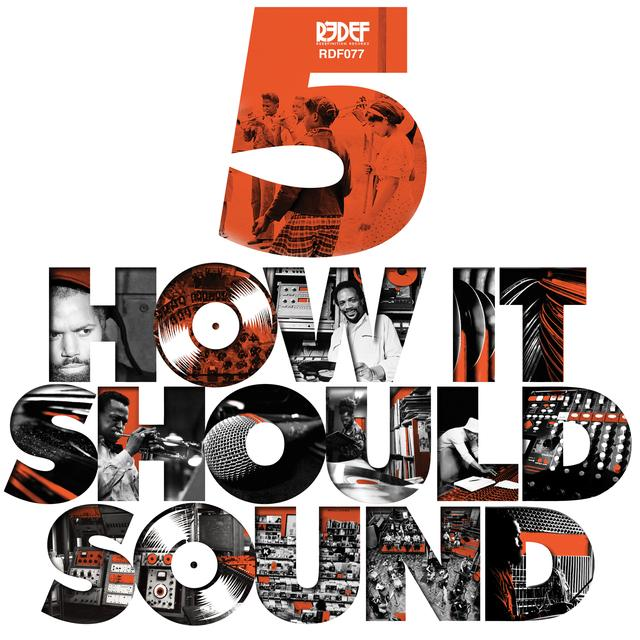 Damu The Fudgemunk HOW IT SHOULD SOUND 5 Vinyl Record