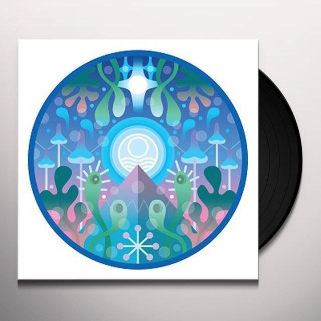 Seahawks DEEP HAUL Vinyl Record