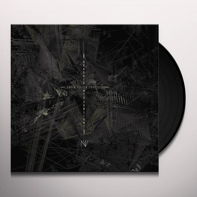 DRAGGED INTO SUNLIGHT / GNAW THEIR TONGUES NV Vinyl Record