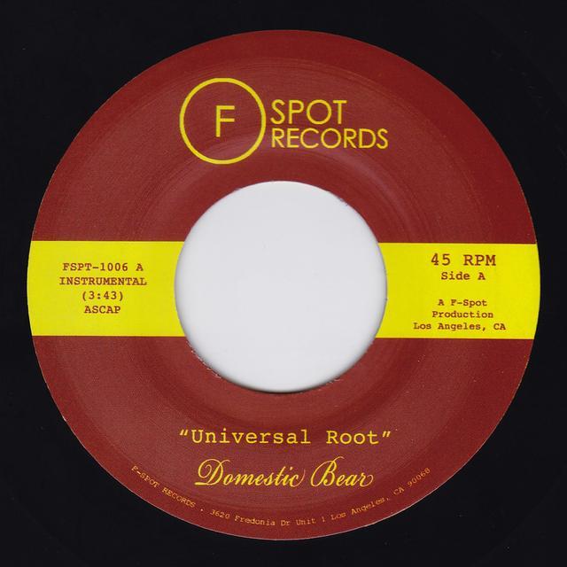 DOMESTIC BEAR UNIVERSAL ROOT / TOPHER NIGHTS Vinyl Record