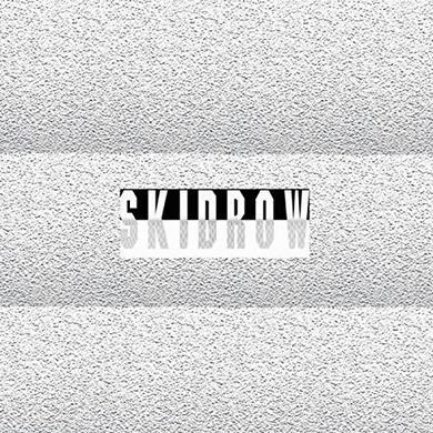 James Ferraro SKID ROW Vinyl Record