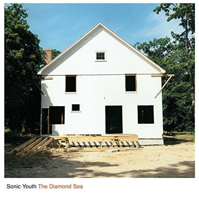 Sonic Youth DIAMOND SEA Vinyl Record