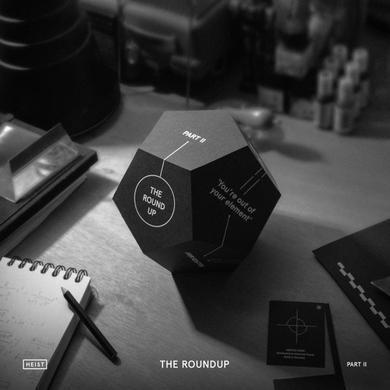 ROUNDUP PART II / VAR Vinyl Record
