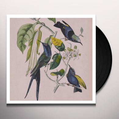 Susuma Yokota SAKURA Vinyl Record