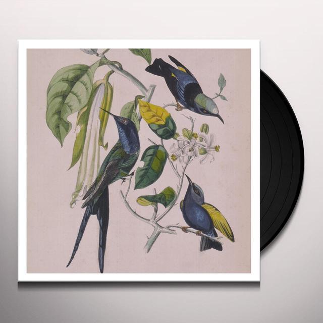 Susuma Yokota SAKURA Vinyl Record - w/CD