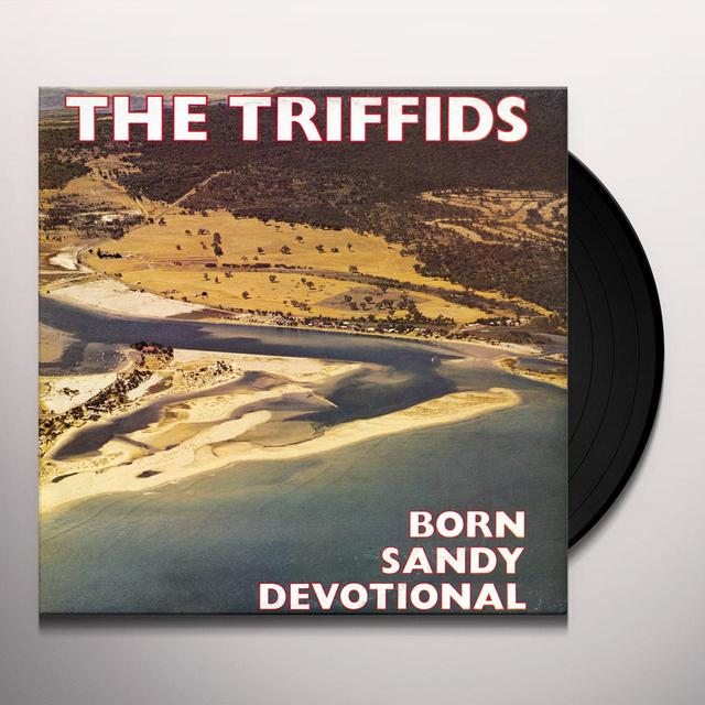Triffids BORN SANDY DEVOTIONAL Vinyl Record - UK Release