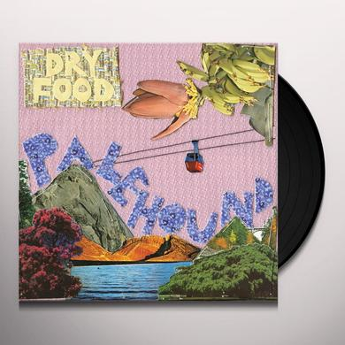 Palehound DRY FOOD Vinyl Record