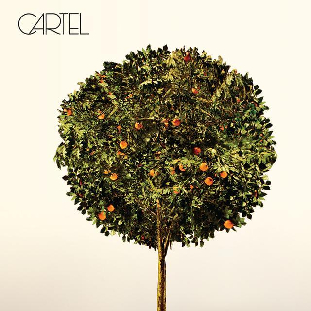 CARTEL Vinyl Record - Gold Vinyl, 180 Gram Pressing