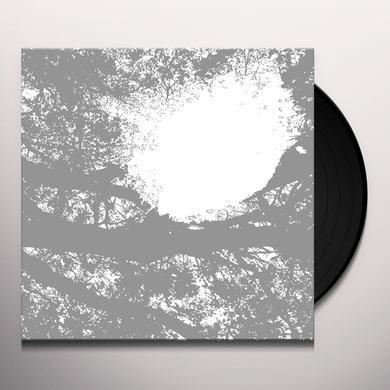 Comets On Fire FIELD RECORDINGS FROM THE SUN Vinyl Record