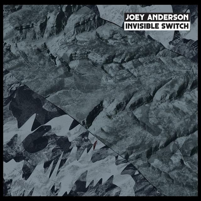 Joey Anderson INVISIBLE SWITCH Vinyl Record
