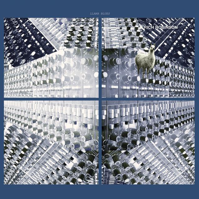 Rich Robinson LLAMA BLUES Vinyl Record