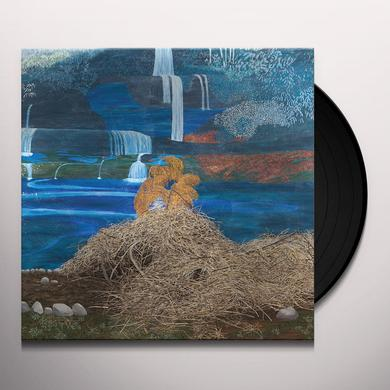 Mary Lattimore AT THE DAM Vinyl Record