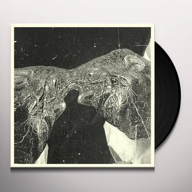 Secret Boyfriend MEMORY CARE UNIT Vinyl Record