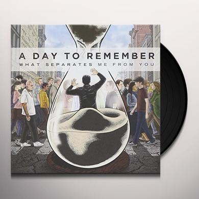 Day to Remember WHAT SEPARATES ME FROM YOU Vinyl Record - Picture Disc