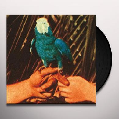 Andrew Bird ARE YOU SERIOUS Vinyl Record