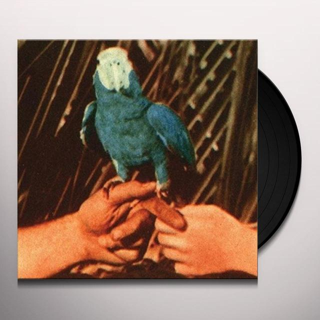 Andrew Bird ARE YOU SERIOUS Vinyl Record