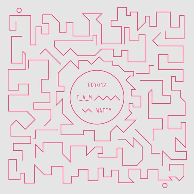 T_A_M WATTY Vinyl Record