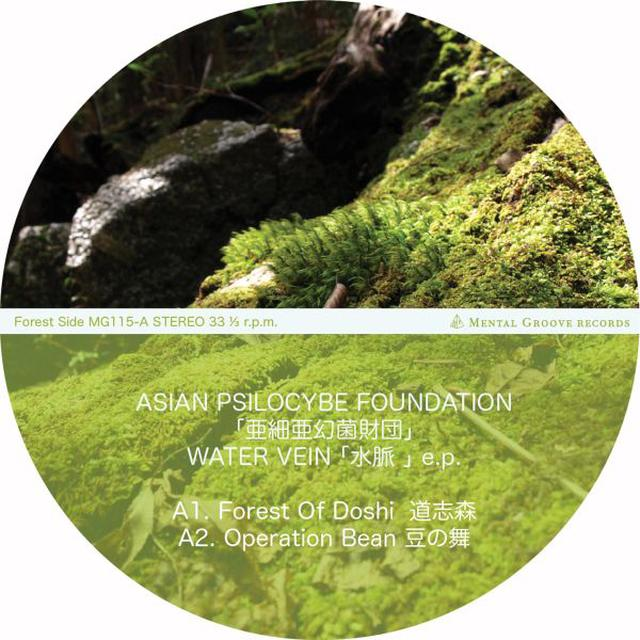 ASIAN PSILOCYBE FOUNDATION WATER VEIN Vinyl Record