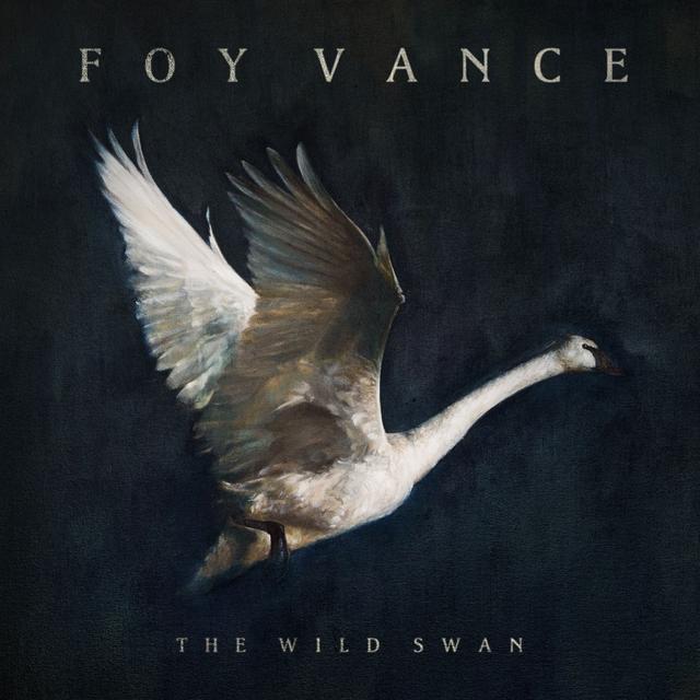 Foy Vance WILD SWAN Vinyl Record