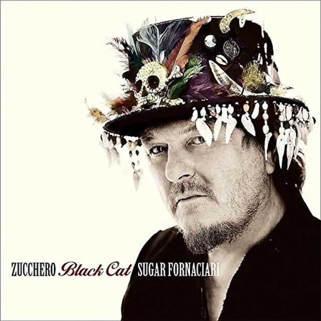 Zucchero BLACK CAT Vinyl Record - Italy Import