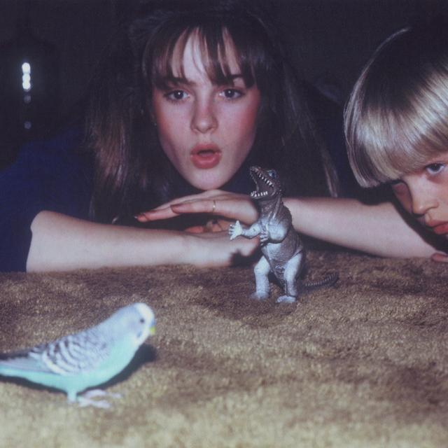 Big Thief MASTERPIECE Vinyl Record - Digital Download Included