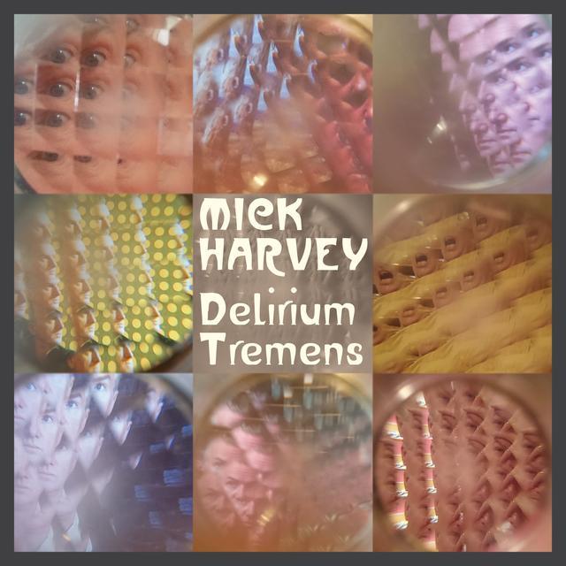 Mick Harvey DELIRIUM TREMENS Vinyl Record