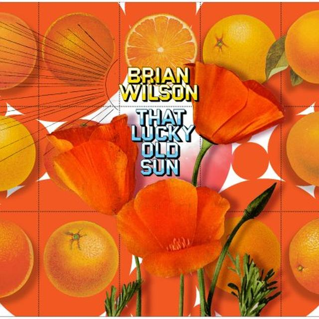 Brian Wilson THAT LUCKY OLD SUN Vinyl Record - Canada Import