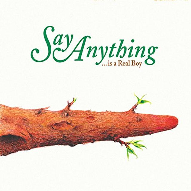 Say Anything IS A REAL BOY Vinyl Record - Gatefold Sleeve