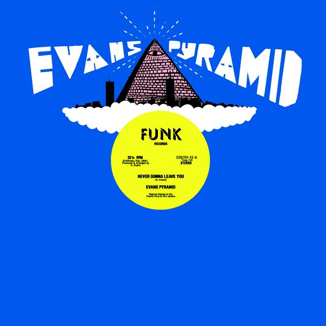 Evans Pyramid NEVER GONNA LEAVE YOU / DIP DROP Vinyl Record
