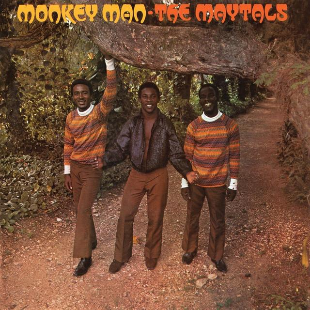 Maytals MONKEY MAN Vinyl Record - UK Import