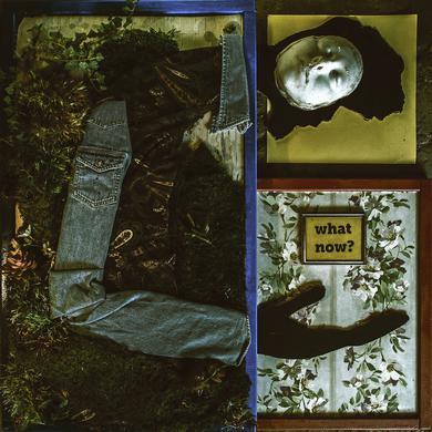 Jon Bap WHAT NOW? Vinyl Record