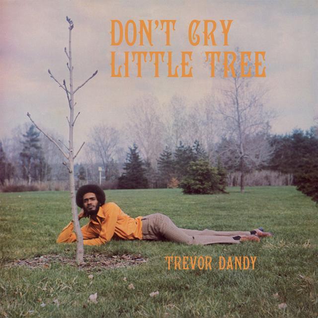 Trevor Dandy DON'T CRY LITTLE TREE Vinyl Record