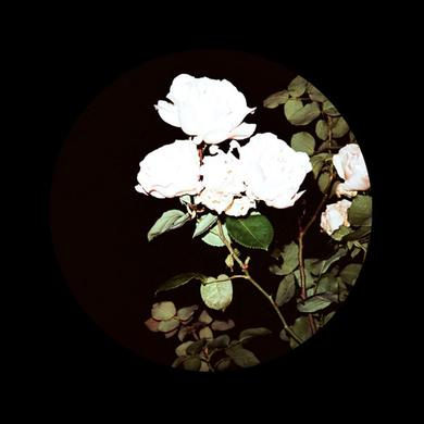 BPBL01.2 / VARIOUS Vinyl Record