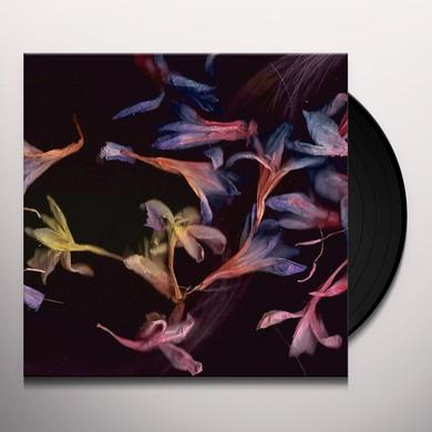 David Collier SMACHT Vinyl Record