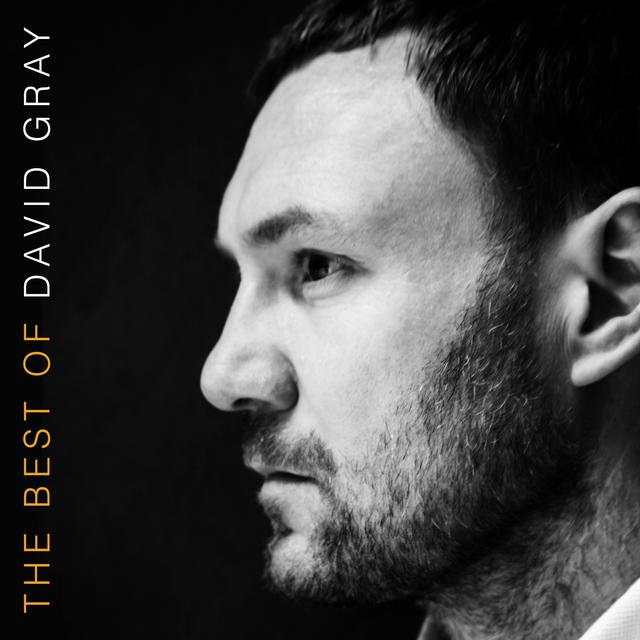 THE BEST OF DAVID GRAY Vinyl Record - Gatefold Sleeve