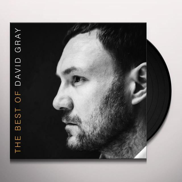 THE BEST OF DAVID GRAY Vinyl Record - Gatefold Sleeve