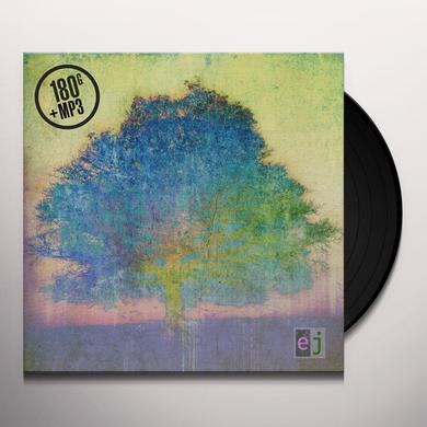 Eric Johnson EJ Vinyl Record - 180 Gram Pressing, Digital Download Included