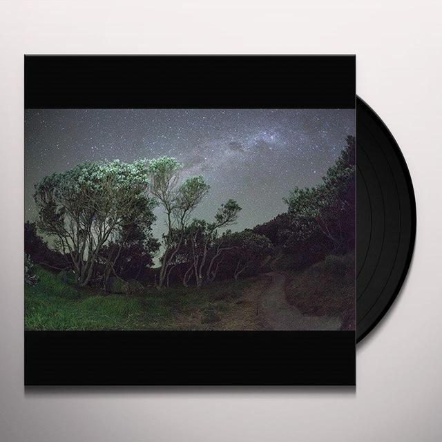 Esben & The Witch OLDER TERRORS Vinyl Record