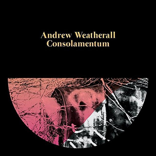 Andrew Weatherall CONSOLAMENTUM Vinyl Record
