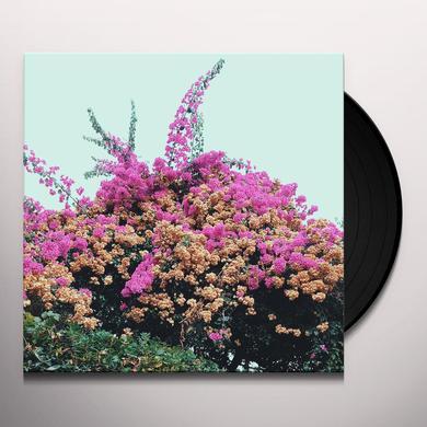JAY SOM TURN INTO Vinyl Record - 180 Gram Pressing, Digital Download Included