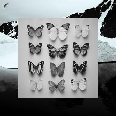 Christian Loffler YOUNG ALASKA Vinyl Record